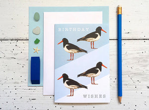 Oyster Catcher Birthday Card - Bluebells of Bath
