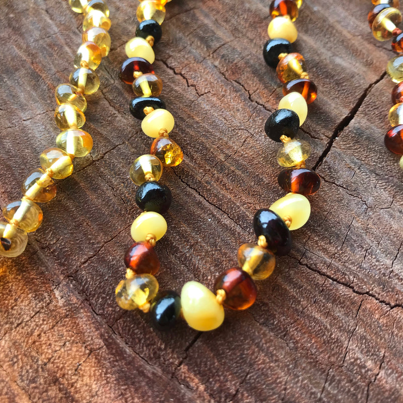 Assorted Adult Baltic Amber Necklaces