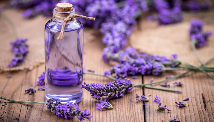 ECO Lavender Essential Oil Calm & Sleep
