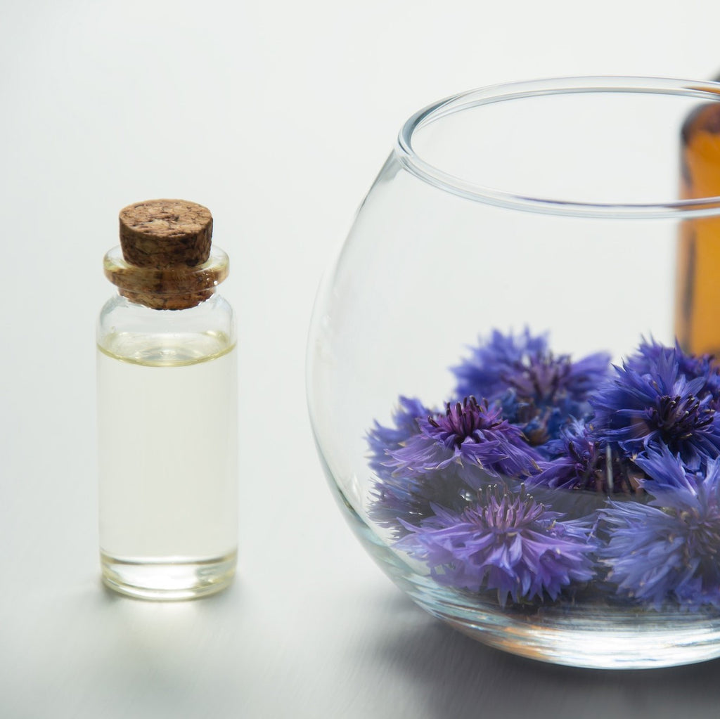 3 Advanced Tips For Extracting Nature's Remedies