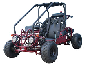 New 2 seat 110cc Gas Powered Kids Go Karts are Back in Stock