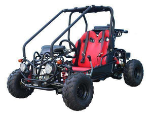Off Road 110cc Double Seat Kids Go Karts