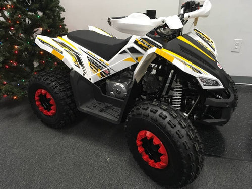 TaoTao 125cc REX Gas Powered Youth ATV - Q9PowerSportsUSA.com