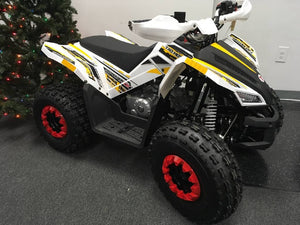 New 2019 TaoTao 125cc REX Gas Powered Kids ATV - Q9PowerSportsUSA.com