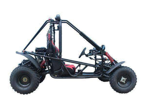 Targa 200cc Double Seat Go Karts for adults