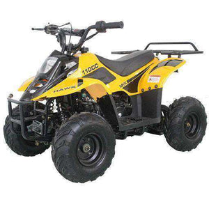 Gas Powered Small Kids four wheelers