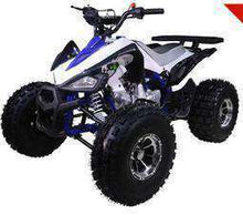 TaoTao 125cc Youth ATVs