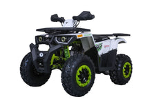 Raptor 200 Utility Four wheeler