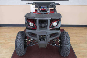 where to buy TaoTao Rhino 250 ATVs