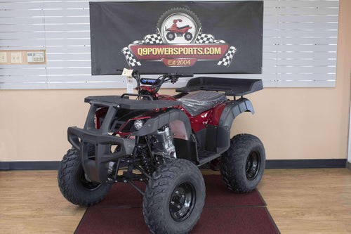Rhino 250 Gas Powered 2WD Utility Four Wheeler - Q9PowerSportsUSA.com