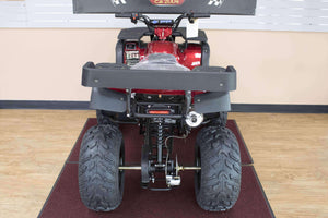 TaoTao Rhino 250 utility ATV for Hunters