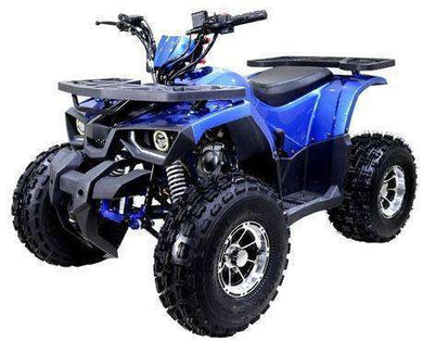 New Off Road 125cc Raptor Kids Utility Four wheelers - Q9PowerSportsUSA.com