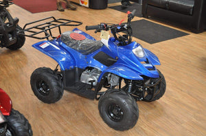 Blue gas powered Small Kids ATVs