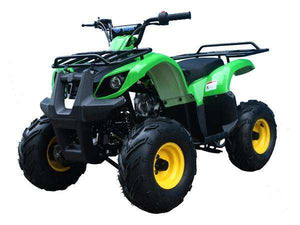 Youth Utility ATVs for beginners