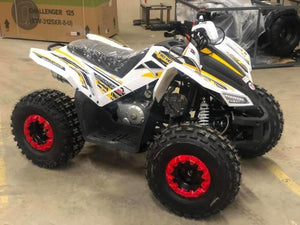 TaoTao REX 125cc Kids Four Wheelers for sale