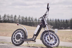 GeeBee Electric Scooters