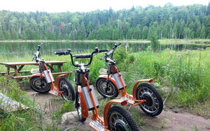 Premium Quality Electric Scooters