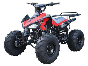 125cc Youth Four Wheelers Dealer