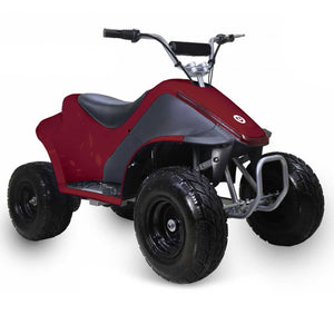 Tao Motor Rover 500 Electric Kids Mini ATV