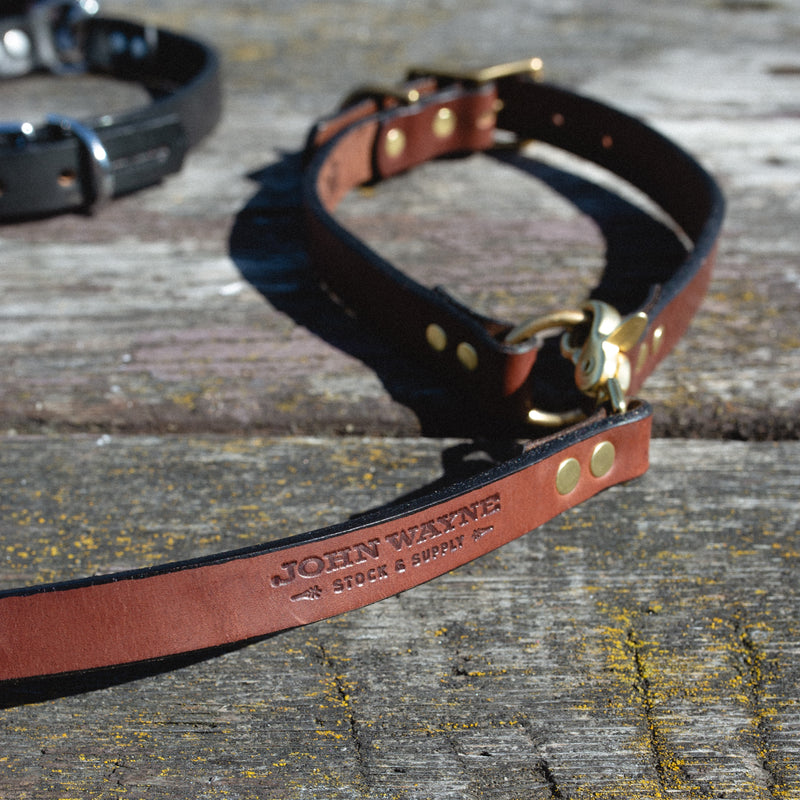 The John Wayne Dog Leash - Brown