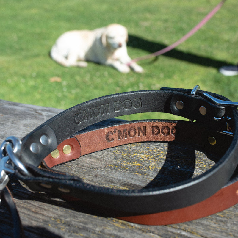 The John Wayne Dog Collar - Black