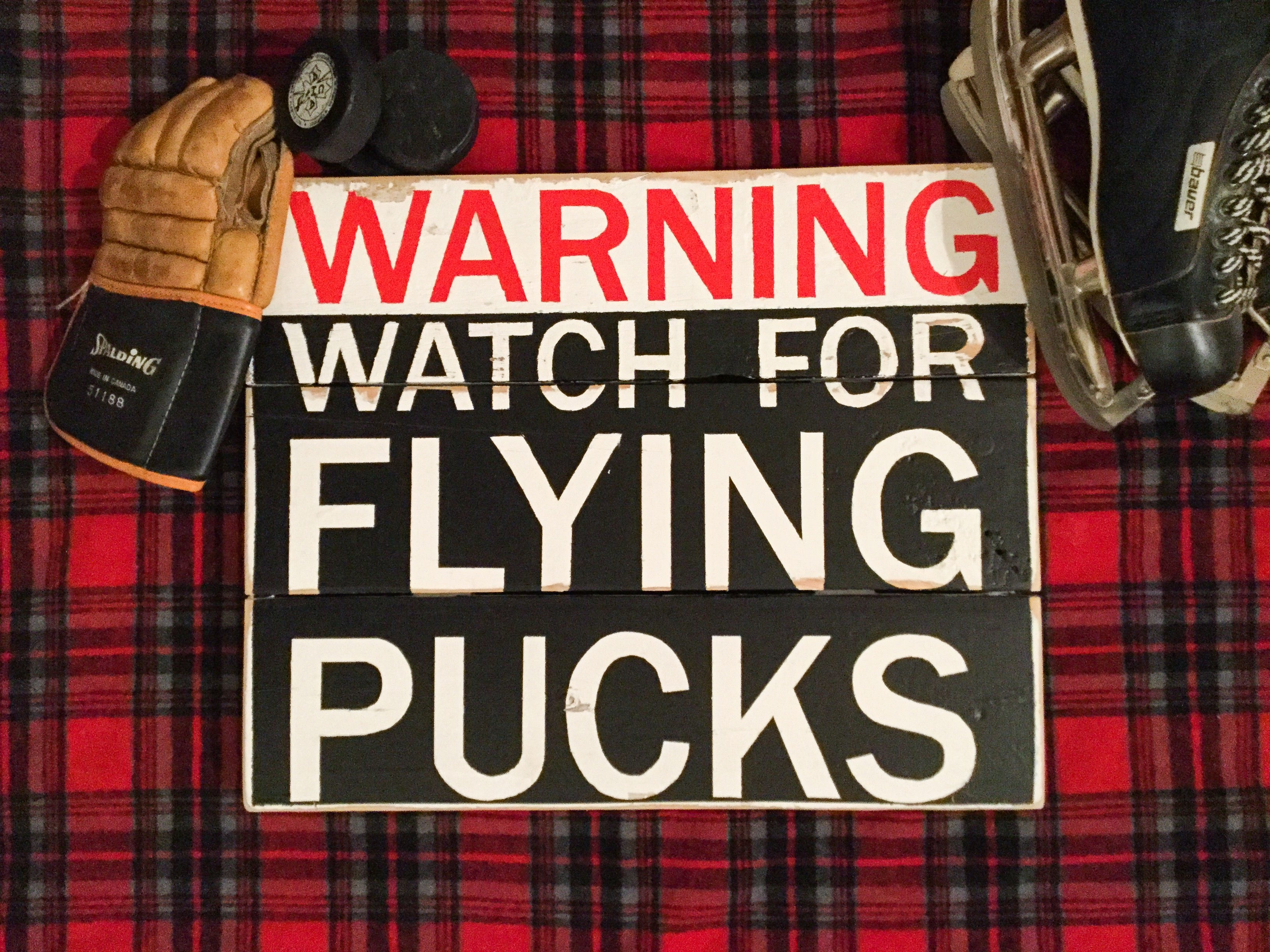Warning Watch for Flying Pucks Sign