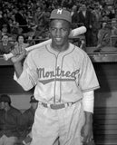 EFF Montreal Royals 1946 Road Jersey