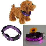 Super Deal Light In The Dark Collar For Dogs Or Cats