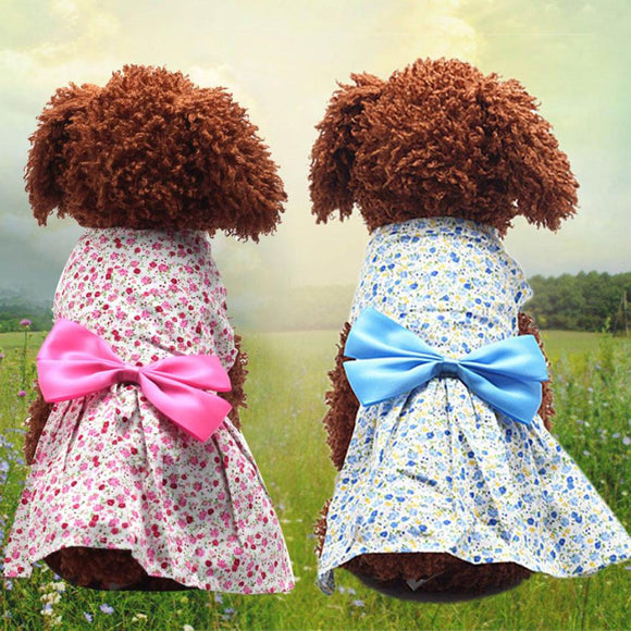 Flowerly Dress With Ribbon - Pets Emporium