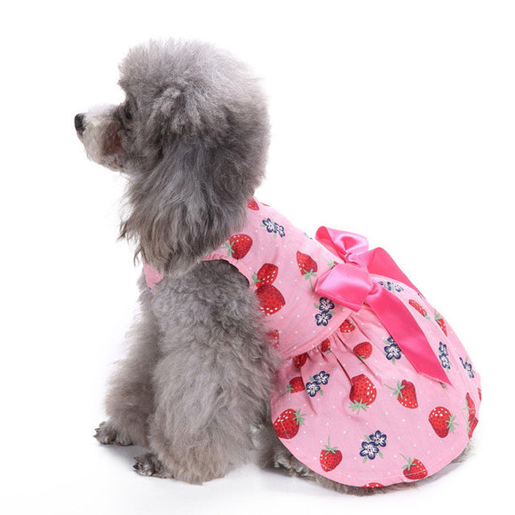 Strewberries Dress For Dogs - Pets Emporium