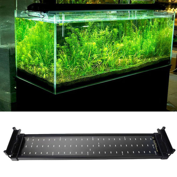 Decorative SMD LED Lamp For Fish Tank 11W 2 Mode 50cm 60 White+12 Blue - Pets Emporium