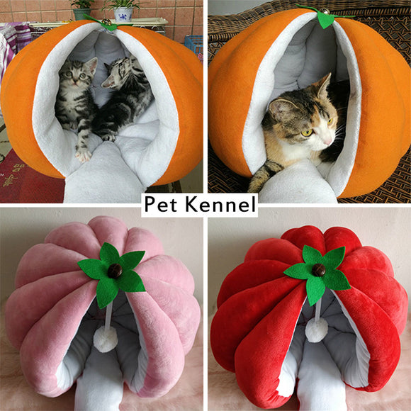 warm pumpkin dog or cat house - Pets Emporium