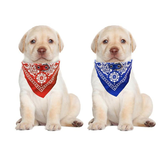 Puppy Dog Collar - Pets Emporium