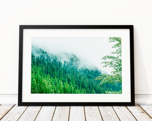 Misty Pines Art Print Decor - Pine Lane Designs