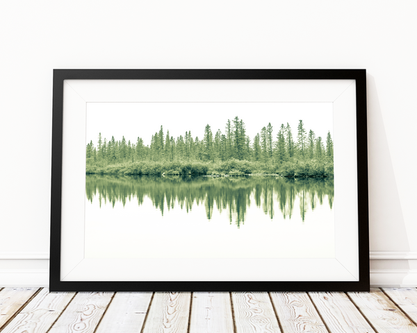 NATURE'S MIRROR ART PRINT DECOR - Pine Lane Designs