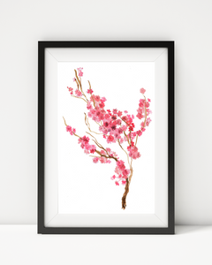 CHERRY BLOSSOMS WATERCOLOUR ART PRINT DECOR - Pine Lane Designs