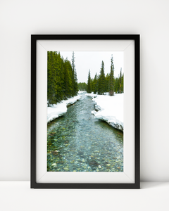 Meandering Stream Art Print Decor - Pine Lane Designs
