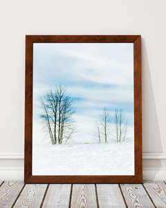 Serene Moment Art Print Decor - Pine Lane Designs