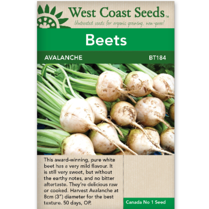 Beets Avalanche - West Coast Seeds