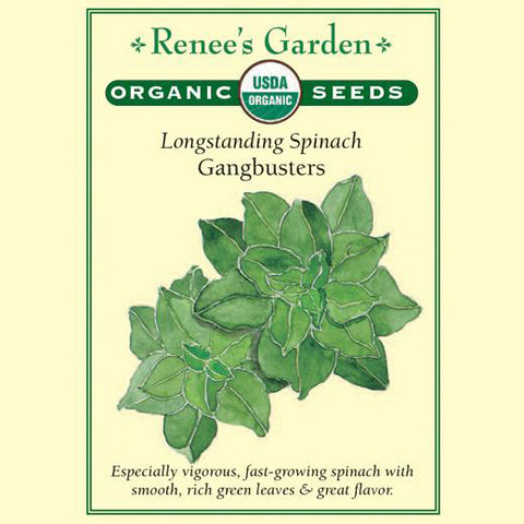 Spinach Gangbusters Organic - Renee's Garden