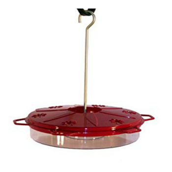 Best Hummingbird Feeder with Built-in ant gaurd
