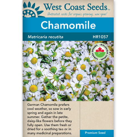 Chamomile Organic - West Coast Seeds