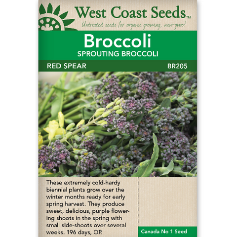 Broccoli Red Spear - West Coast Seeds