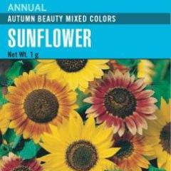 Sunflower Autumn Beauty - Cornucopia Seeds