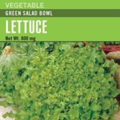 Lettuce Green Salad Bowl - Cornucopia Seeds