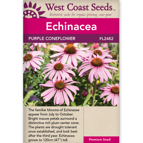 Echinacea Purple Coneflower - West Coast Seeds