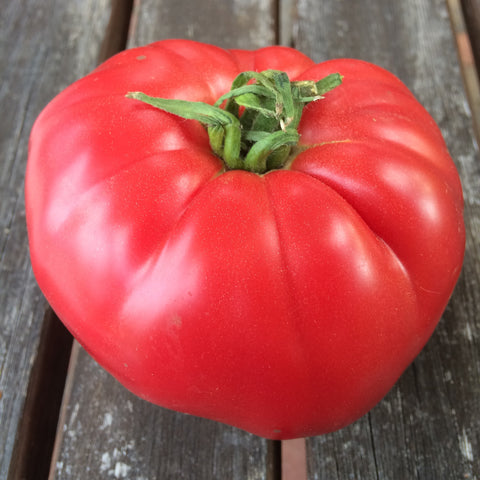 Tomatoes Mortgage Lifter - Good Earth Farms