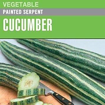Cucumber Painted Serpent - Cornucopia Seeds