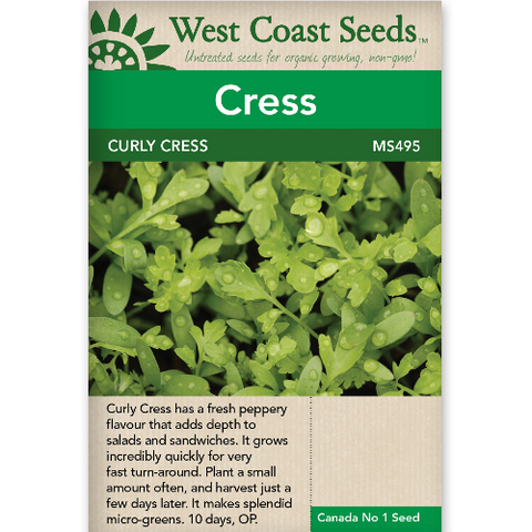 Curly Cress Peppergrass - West Coast Seeds