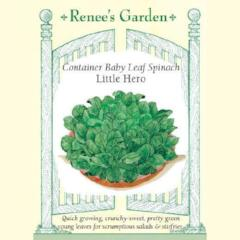 Spinach Little Hero - Renee's Garden